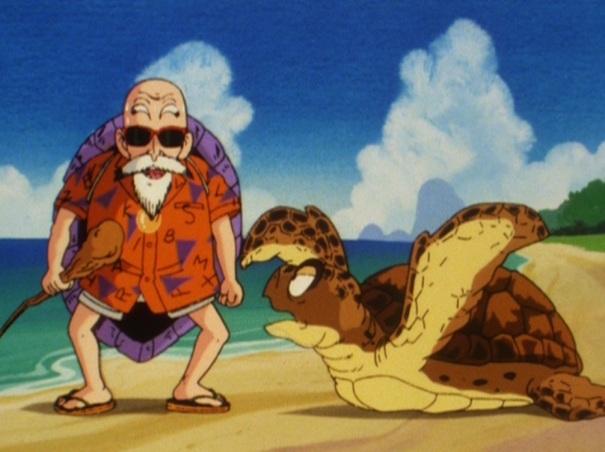 Dragon Ball 06 Master Roshi Turtle