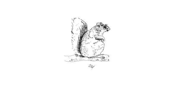 Squirrelmouse